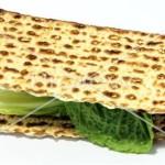 Seder11